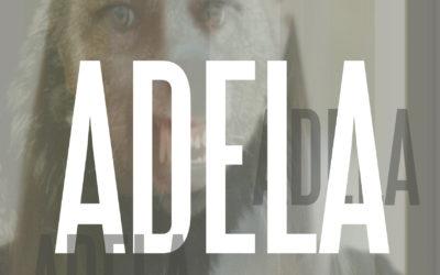 """LDA: ADELA"""